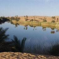 Oasis in the midle of the desert